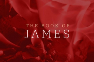 Berean Bible Church Sermon Series James alt