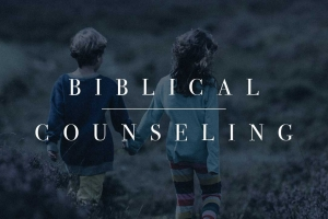 Berean Bible Church Sermon Series Biblical Counseling